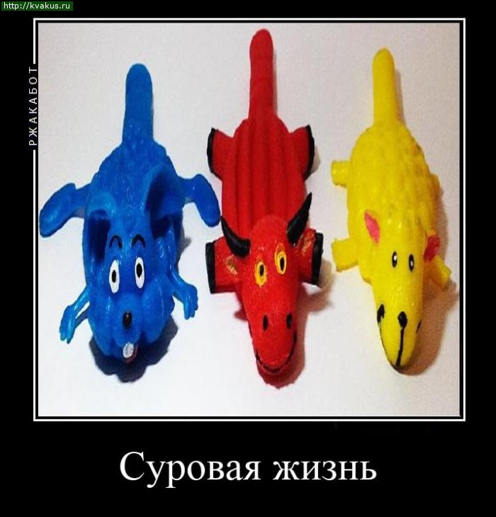 Приколы игрушки