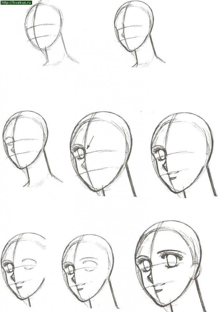 Голова - построение